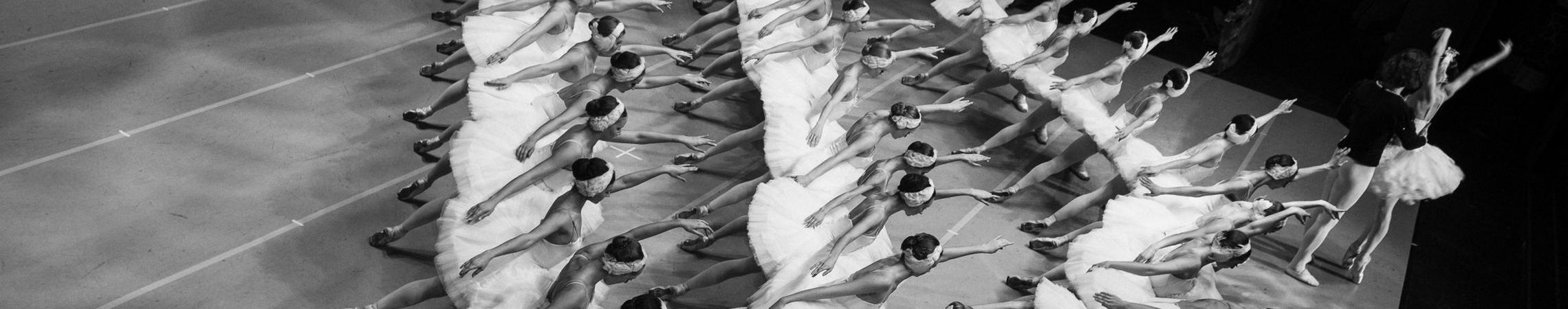 Pleiadi Danza ASD, Roma