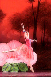 pleiadi-danza-miniature-favola-di-tapiola